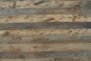 realpanel-silver-larch-1-thumb-185x125-567