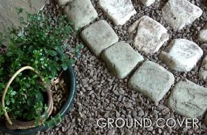 ground-img